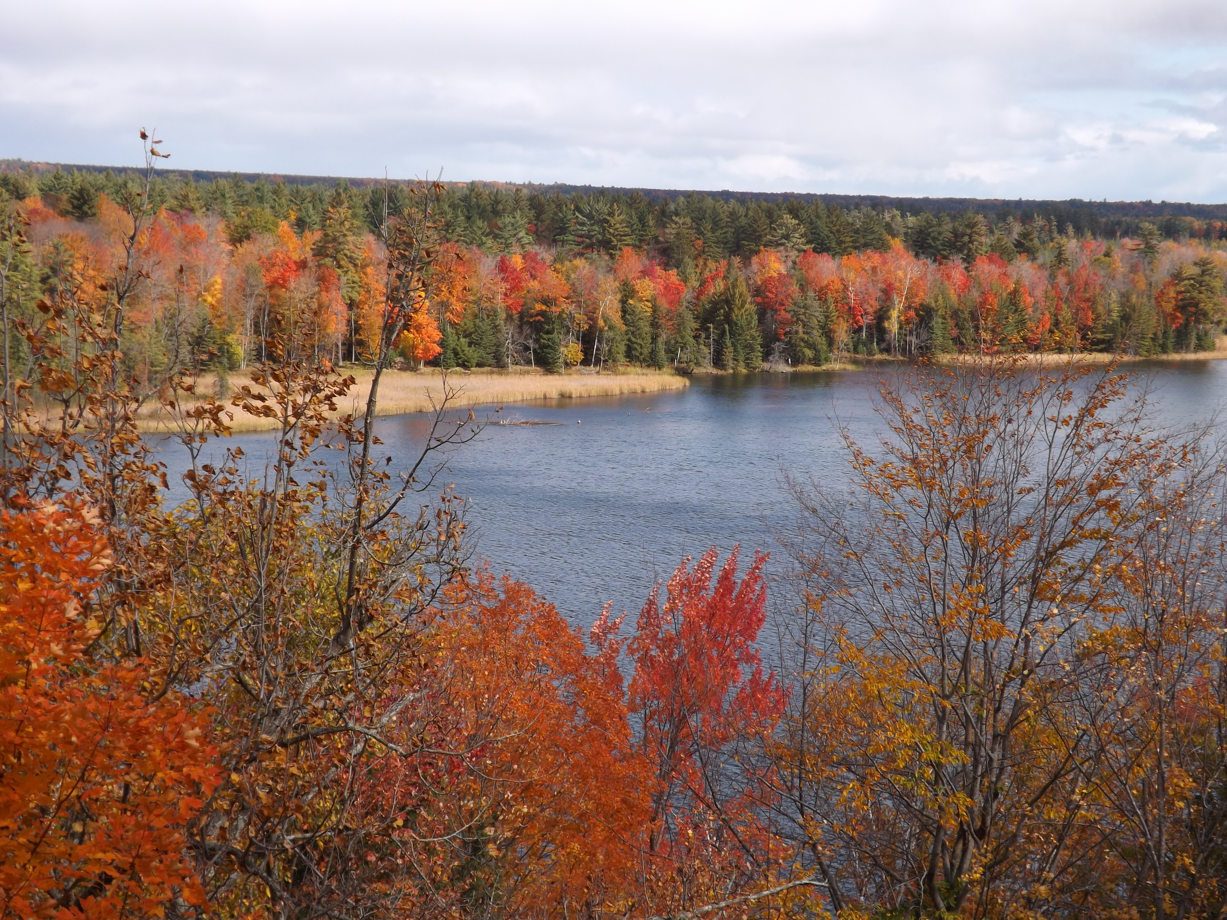 Au Sauble River in the fall
